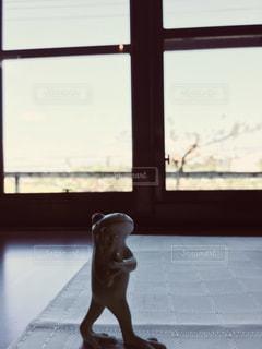 ウィンドウの前に立っているカエルの写真・画像素材[1120909]