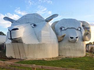 トタンで作った羊の建物の写真・画像素材[1098931]