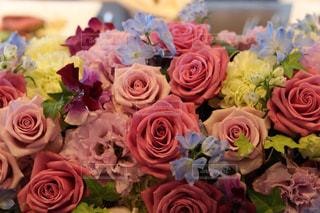 花の写真・画像素材[1097402]