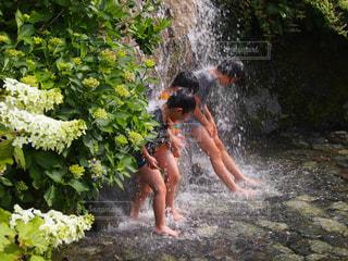 水浴びの写真・画像素材[2777161]