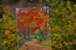 紅葉の中の絵画 - No.1099459