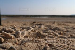 浜辺の写真・画像素材[1114331]