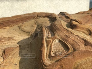 近くの岩のアップの写真・画像素材[1099776]