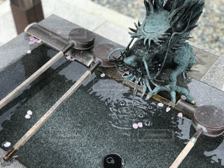 龍の手水舎の写真・画像素材[1113294]