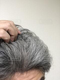 白髪に悩む男性の写真・画像素材[1289775]