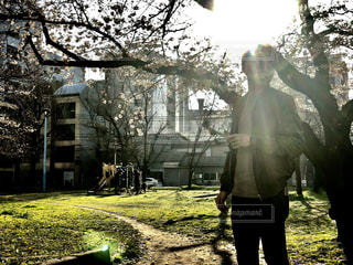 春の公園 - No.1102190