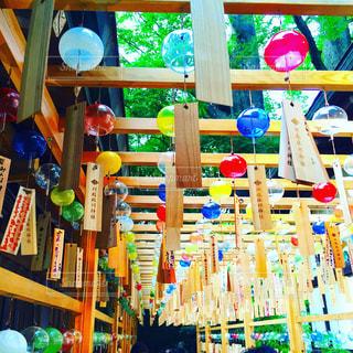 氷川神社の写真・画像素材[1169506]