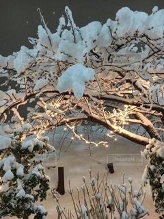 雪の山の写真・画像素材[1100806]