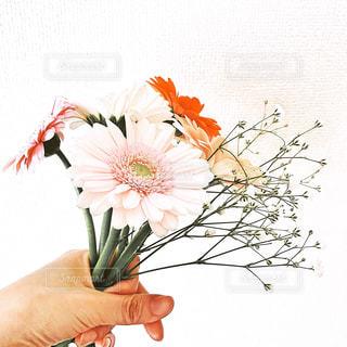 愛を込めて花束を - No.1195051