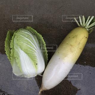 新鮮野菜の写真・画像素材[1101843]