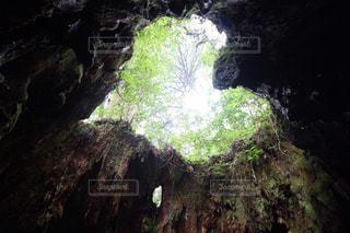 森の中の大きな岩 - No.1101975