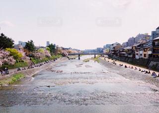 春の鴨川  祇園四条の写真・画像素材[1102000]