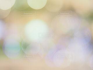 玉ボケの世界の写真・画像素材[1102124]
