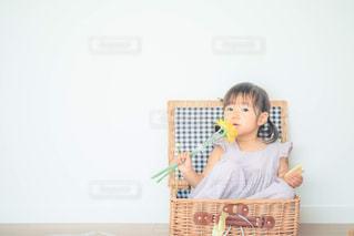 カゴ入り娘の写真・画像素材[1288905]
