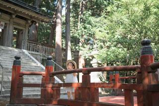 神社でお散歩!の写真・画像素材[1400674]