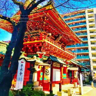 神田明神の門の写真・画像素材[1102934]