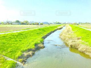 深作川と新緑の写真・画像素材[1106450]
