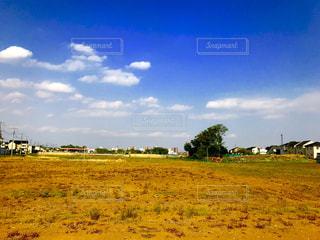 空き地と青空の写真・画像素材[1120837]