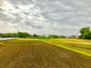 さいたま市見沼区の畑の風景の写真・画像素材[1131207]