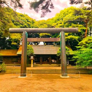 埼玉県護国神社の写真・画像素材[1170205]