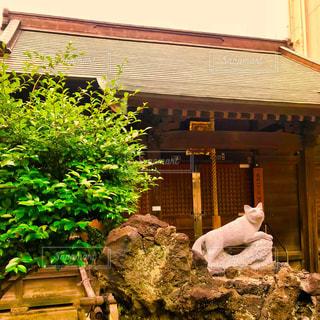 稲荷神社の写真・画像素材[1188449]