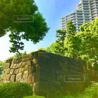 和田倉噴水公園の写真・画像素材[1206325]
