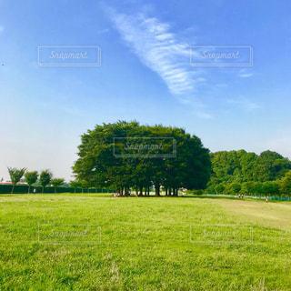 公園の写真・画像素材[1261020]
