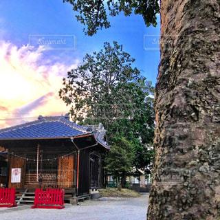 宮ヶ谷塔氷川神社の写真・画像素材[1292405]