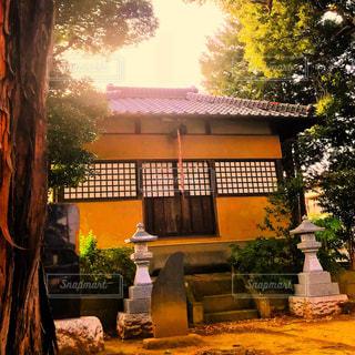 神社の写真・画像素材[1311164]