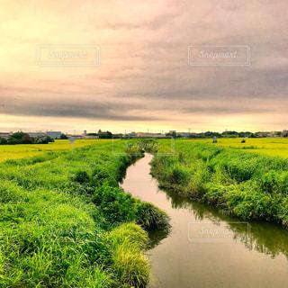 深作川の写真・画像素材[1369135]