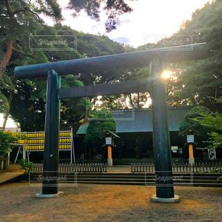 埼玉県護国神社の写真・画像素材[1389810]
