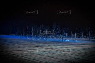 青い池イルミの写真・画像素材[1102223]