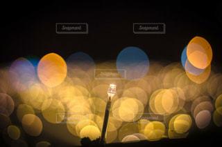 黄色イルミネーションの一本もの写真・画像素材[1102337]