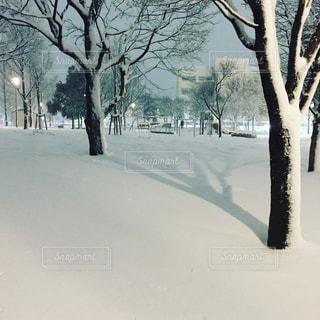 雪景色の公園の写真・画像素材[1102500]