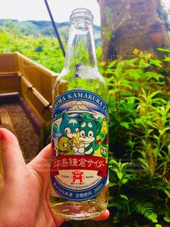 江の島鎌倉サイダーの写真・画像素材[1108516]