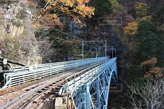 後曳橋を渡る黒部峡谷トロッコ列車の写真・画像素材[2788082]