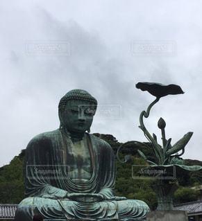 鎌倉の大仏様の写真・画像素材[1103184]