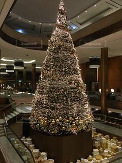 巨大なクリスマスツリーの写真・画像素材[1107892]