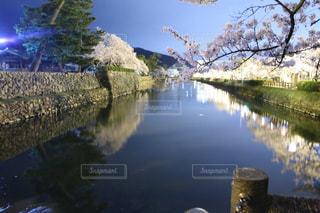 水の体の上の橋の写真・画像素材[1105160]