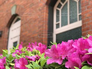 明治学院記念館の写真・画像素材[1323532]