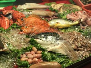 夜市 鮮魚の写真・画像素材[1346329]