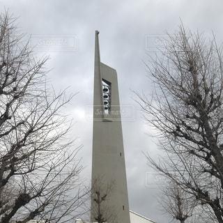 東京カテドラル関口教会の写真・画像素材[1353063]
