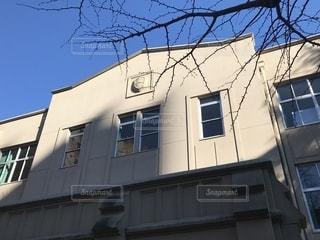 青山学院大学 校舎の写真・画像素材[1372075]