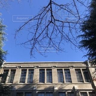 青山学院大学 ベリーホールの写真・画像素材[1372101]