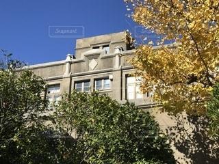 青山学院大学 ベリーホールの写真・画像素材[1372115]