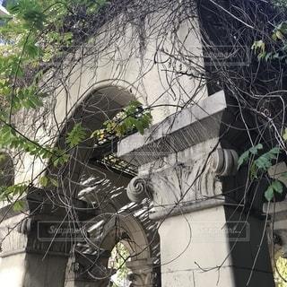 東京大学の写真・画像素材[1375667]
