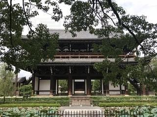 東福寺 山門の写真・画像素材[1494243]
