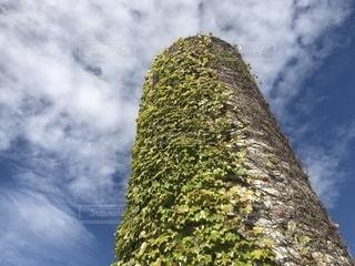 ノリタケの森の写真・画像素材[1519058]