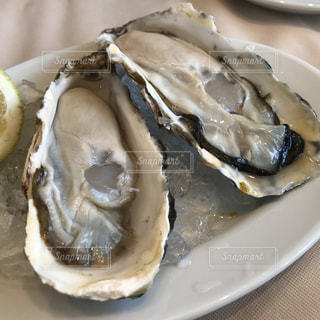 生牡蠣の写真・画像素材[1714845]