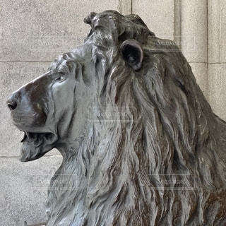 ライオン像の写真・画像素材[2079562]